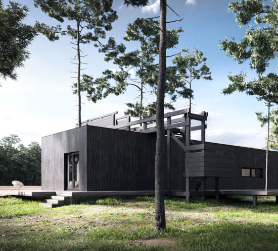 modern house with black wood facade surrounded by forest